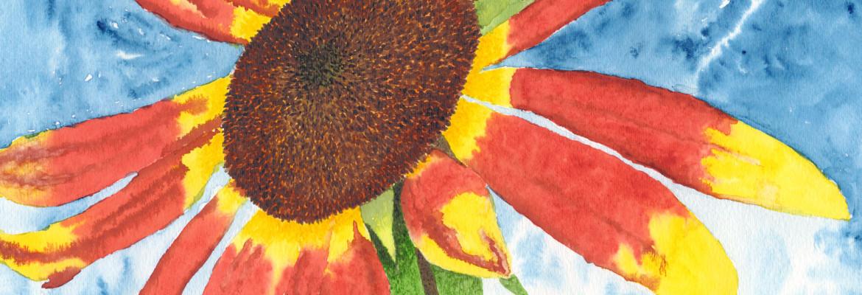 Kelli's Sunflower